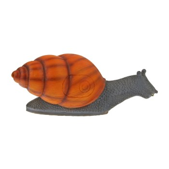 tc-targets-little-snail